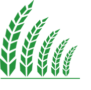 Logo Agri Information Partners