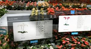 Alle informatie over een plant recht voor je neus, zonder deze op te hoeven zoeken. Hoe mooi zou dat zijn!